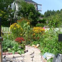 Bild Magnolienhaus - Garten